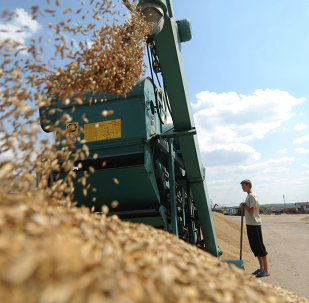 Russian agricultural workers will soon strengthen their positions in domestic market, and also strengthen their international competitive position