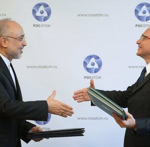 Russian nuclear agency Rosatom has stated that the construction, as well as fuel and equipment deliveries will guaranteed by the IAEA and in compliance with the Treaty on the Non-Proliferation of Nuclear Weapons (NPT).