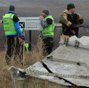 Dutch experts work at Malaysia Airlines Flight MH17 crash site