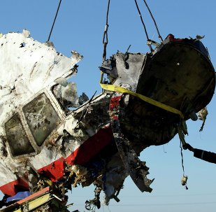 Local workers transport a piece of the Malaysia Airlines flight MH17 wreckage at the site of the plane crash near the village of Hrabovo in Donetsk region.