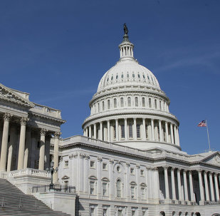 The newly-elected US Congress is likely to continue pushing for providing lethal military assistance to the Kiev government.