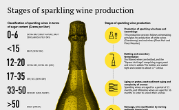 Stages of sparkling wine production