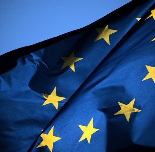 Iceland is expected to withdraw its application to become a member of the European Union