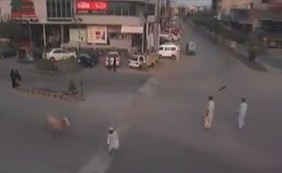 Who Has the Right of Way? Bull Runs Man Over (VIDEO)