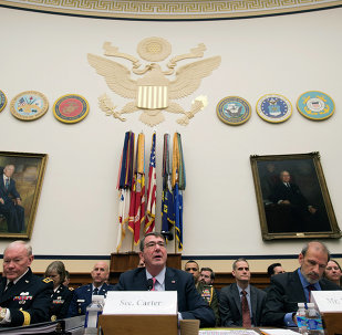 Defense Secretary Ash Carter (center)