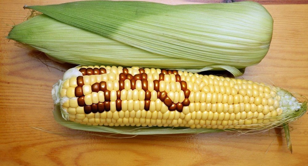 EU Authorizes 17 GMOs for Food, Feed Use Says European Commission