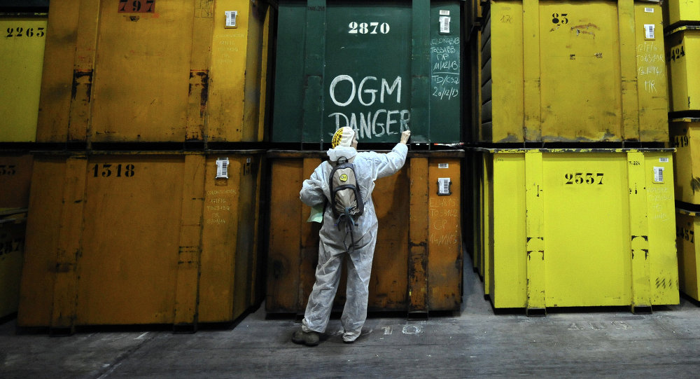 An activist writes GMO danger after anti-GMO activists entered in a production site of US agro-chemicals giant Monsanto to protest against the use of GMO crops and ask for the extension of the moratory on MON810 corn, on January 17, 2014, in Trebes, southern France