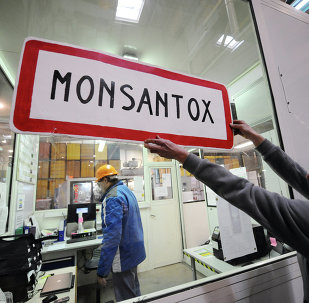 An anti-GMO (genetically-modified crops) activist holds a town entrance roadsign reading Monsantox after anti-GMO activists entered a production site of US agro-chemicals giant Monsanto to protest aganinst the use of GMO crops