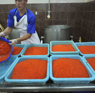 Russia's Federal Service for Veterinary and Phytosanitary Surveillance (Rosselkhoznadzor) said Wednesday it was planning to hold technical consultations with Latvian colleagues on fish imports.