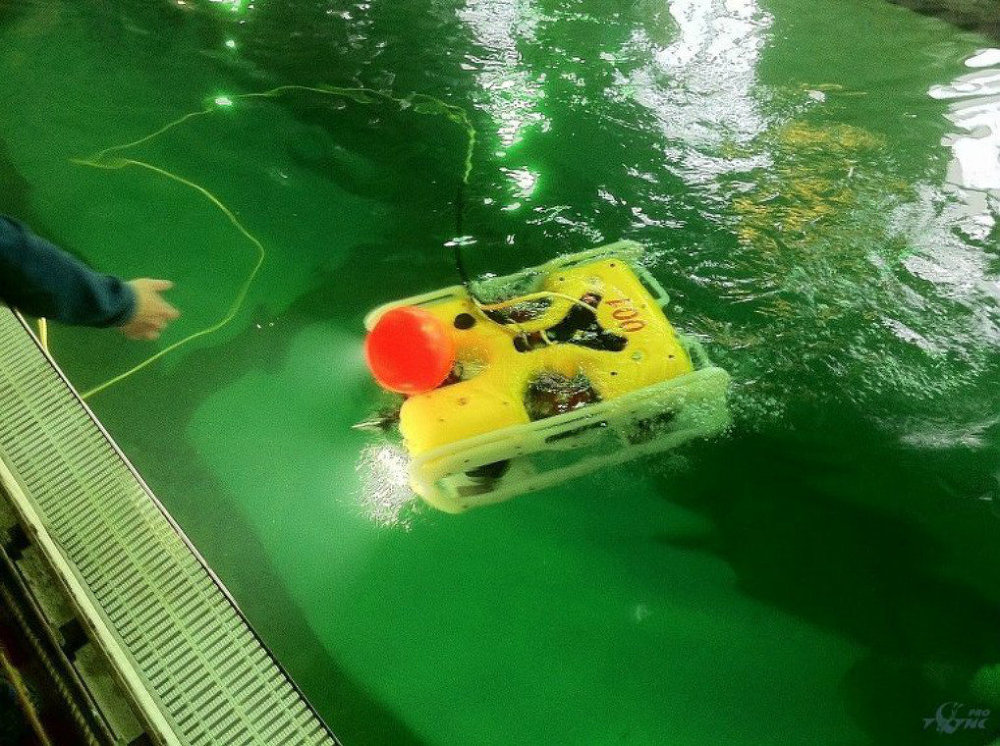 Russian Navy to Get Five Advanced Unmanned Underwater Vehicles by 2016