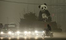 A resident rides an electric bicycle across a street amid heavy smog as vehicles wait for a traffic light next to a statue of pandas, a landmark of the Wangjing area in Beijing, China, December 1, 2015