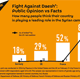 Fight Against Daesh: Public Opinion vs Facts