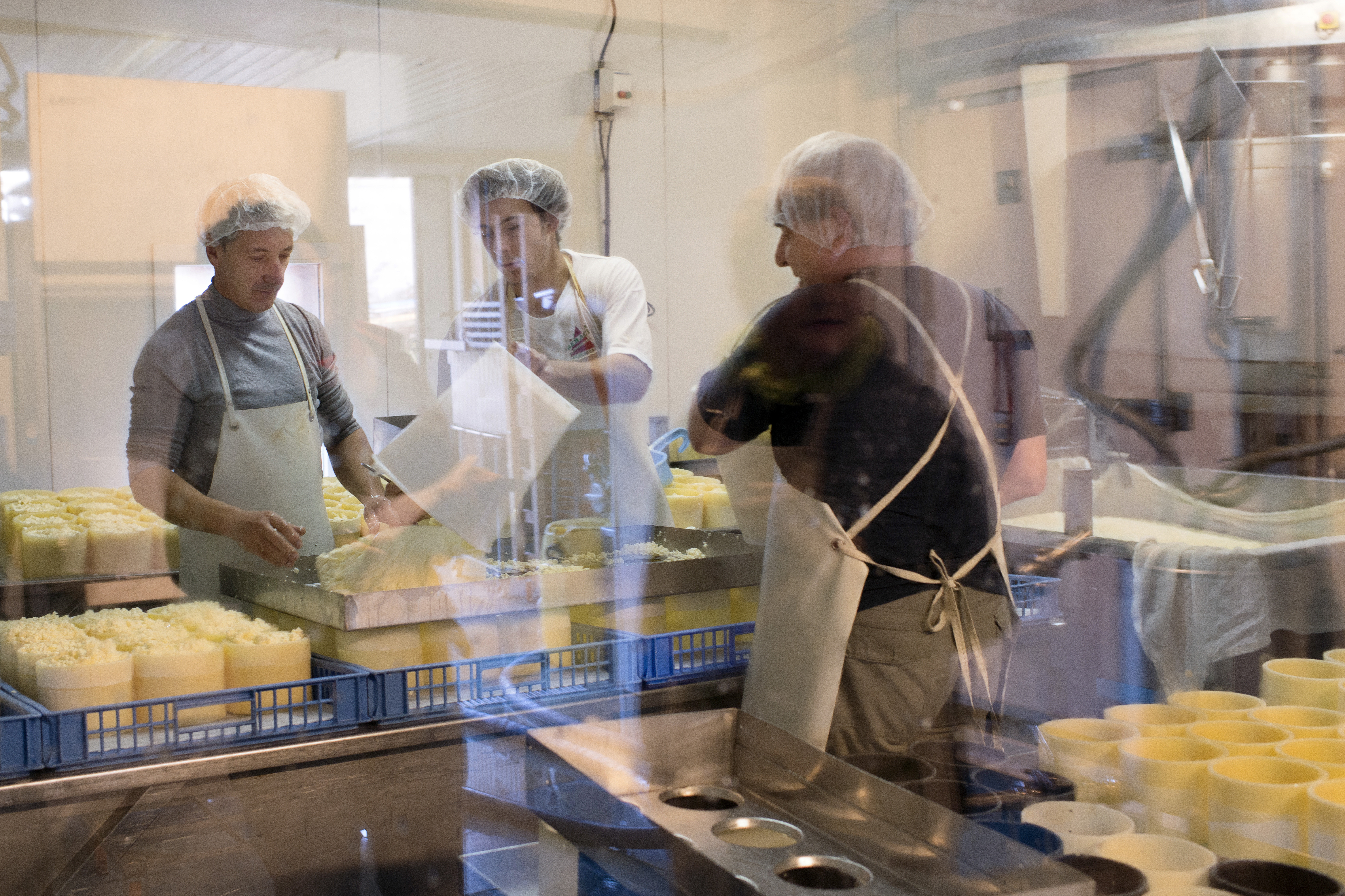 Workers preparing Fourme de Montbrison cheese at the Hautes Chaumes dairy in Sauvain, near Montbrison, central France