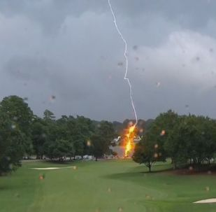 A lightning bolt struck a PGA Tour Championship golf course
