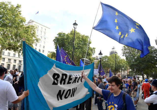 Pro-Brexit and anti-Brexit campaigners protest outside the Cabinet Office in London, Britain August 29, 2019