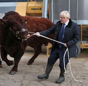 Britain's Prime Minister Boris Johnson visits Darnford Farm in Darnford, Banchory near Aberdeen, Scotland, Britain September 6, 2019.
