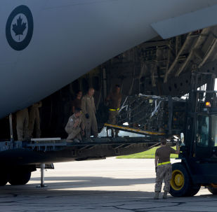 Canadian and Czech soldiers load boxes containing ammunition into a Canadian C-17 Globemaster III army plane (File)