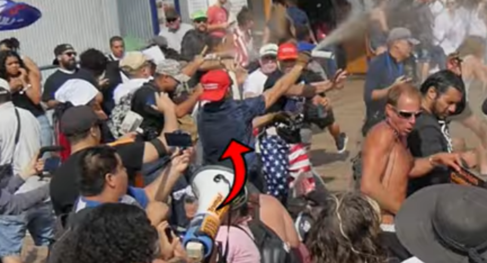 MAGA Hat-Wearing Man Sprays Bear Repellent on US Anti-Trump Protesters