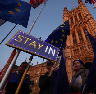 Anti-Brexit protesters hold signs and European Union flags outside the Houses of Parliament in London, Britain, October 22, 2019.