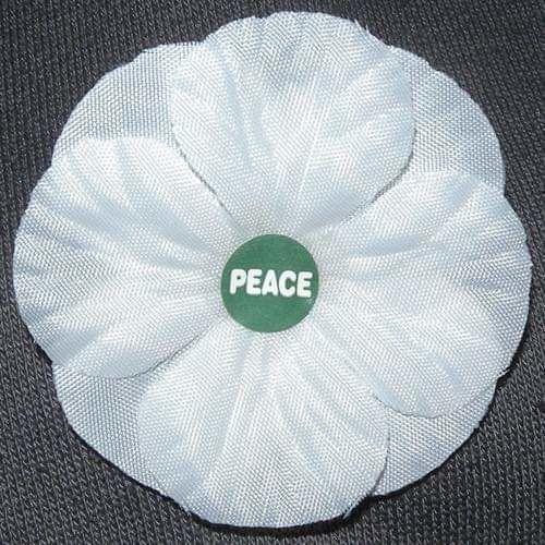 White Peace Poppy