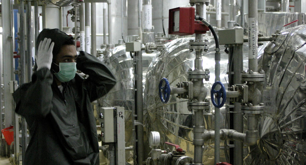 Russian Envoy Urges IAEA Not to Adopt 'Stupid Resolution' on Iran to Avoid International Crisis