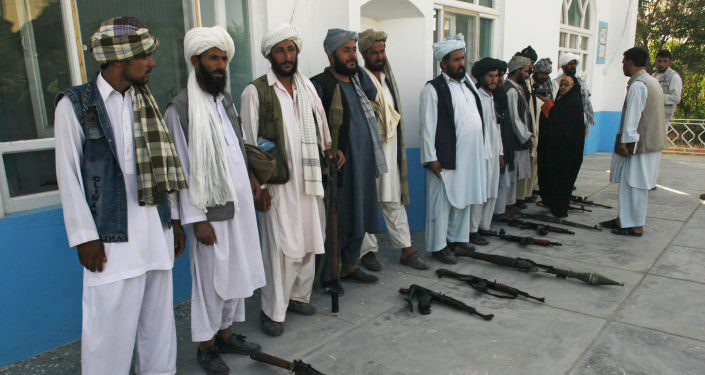 'You're Making A Big Mistake': Taliban Warns Turkey as Ankara Offers Troops to Guard Kabul Airport