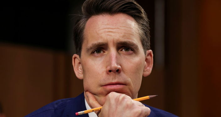 'We Have to Stop Them': Senator Hawley Warns That Big Tech Poses 'Gravest Threat' to US - Report