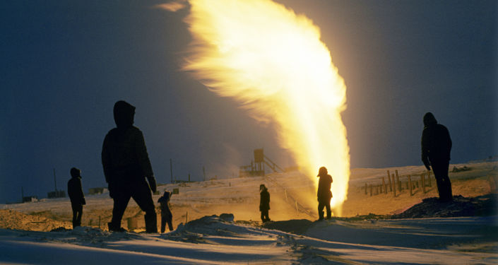 Russian Minister Says 'Easy' to Renounce Gas in Summer Amid EU Calls Against Arctic LNG 2