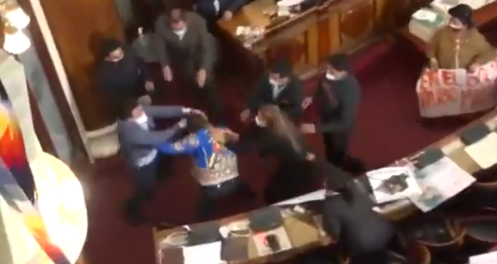 Watch: Bolivian Lawmakers Brawl in Parliament in Heated Debate Over Anez Detention