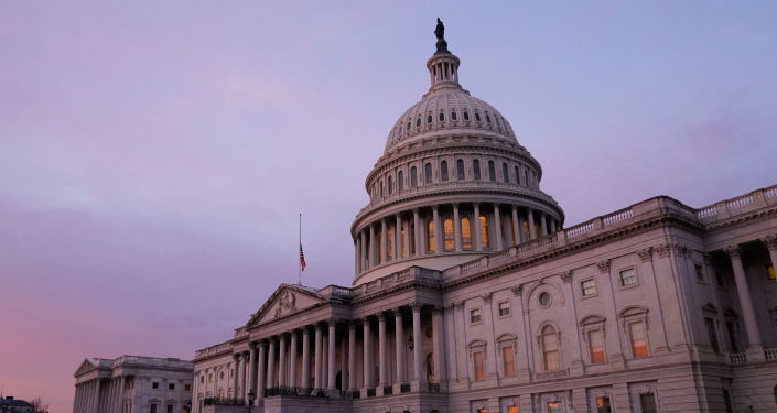 Dems View US Capitol Riot as 'Insurrection,' Republicans Favor 'Legitimate Protest', Poll Says