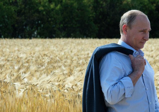 Рабочая поездка В.Путина в Ставропольский край