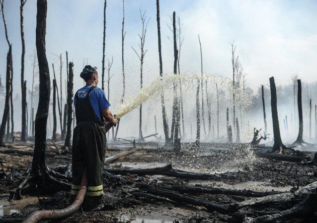 Wildfires in Tver Region