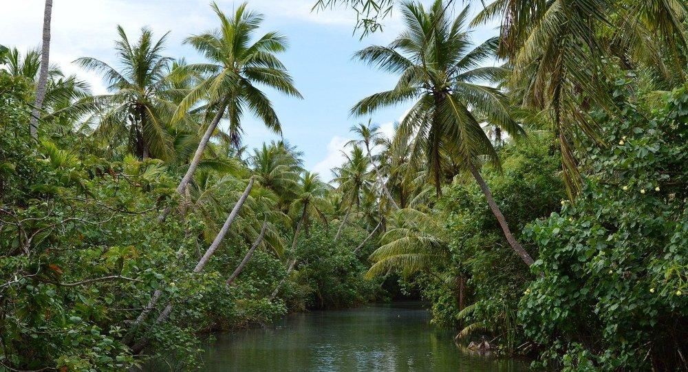 Остров Гуам: река Талофофо, которая рассекает джунгли на острове пополам
