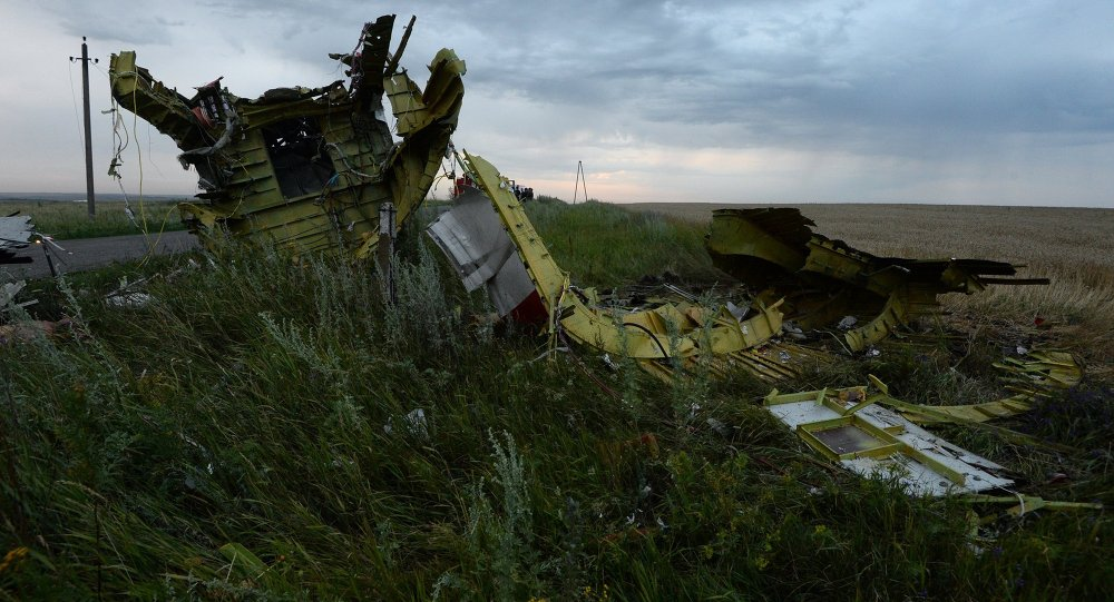 New initiatives to create a tribunal on the downing of the Malaysian Airlines flight are attempts to create distraction from continuing investigations into the tragedy.