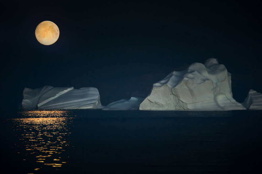 Night at the Arctic