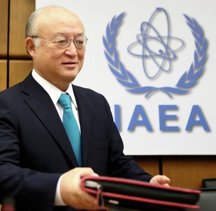 The director of the International Atomic Energy Agency (IAEA) agreed to meet with members of the US Senate next Wednesday, August 5th, to discuss the verification regime for the Iran nuclear agreement.