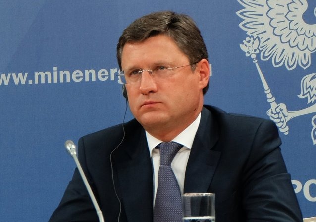 Russian Energy Minister Alexander Novak meets with European Commission Vice-President Gunther Oettinger