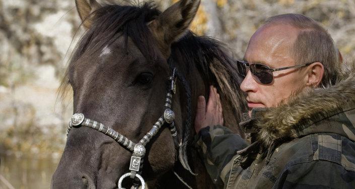 Vladimir Putin on expedition to Ubsunur Hollow Biosphere Preserve