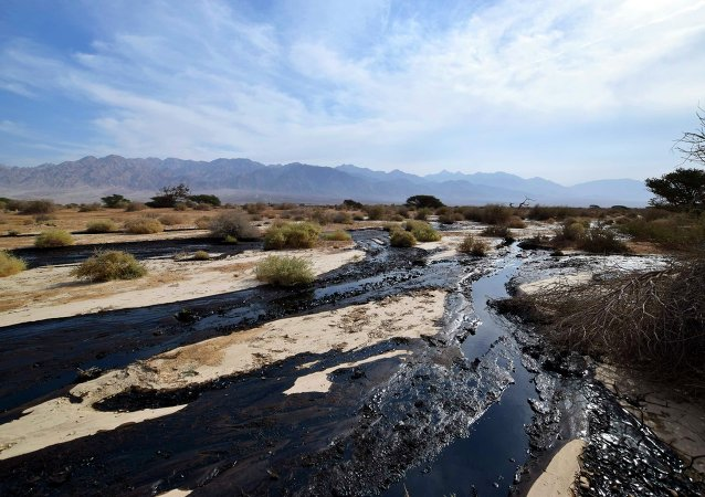 Crude oil streams through the desert in south Israel, near the village of Beer Ora, north of Eilat December 4, 2014