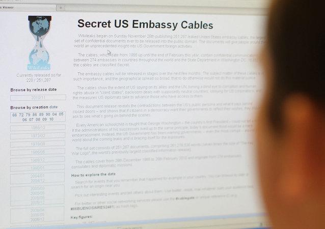 www.wikileaks.org