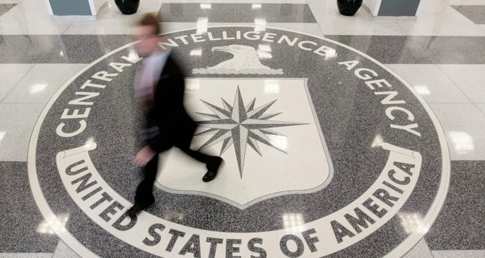 Russia has right to expel CIA successor NGO - former US analyst
