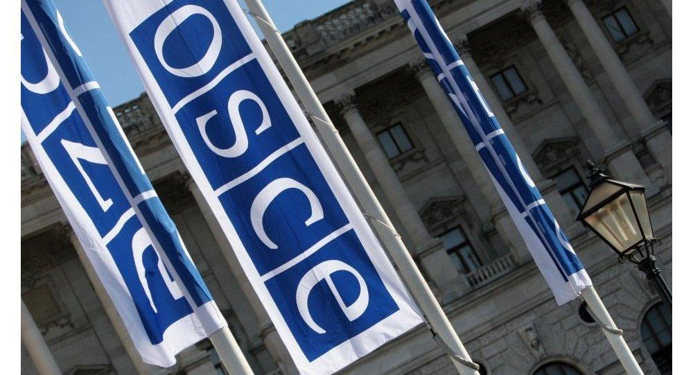 Флаги с логотипом ОБСЕ в Вене