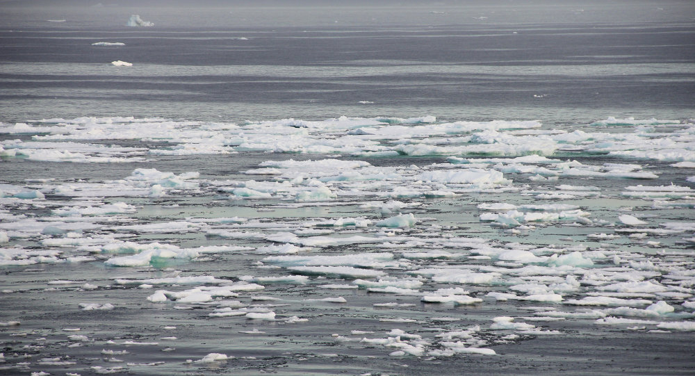 Russia and Norway will sign a declaration on preventing unregulated fishing in the Arctic Ocean: fishery agency