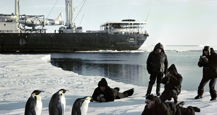 Mariners aboard icebreaker Ob taking photo of penguins