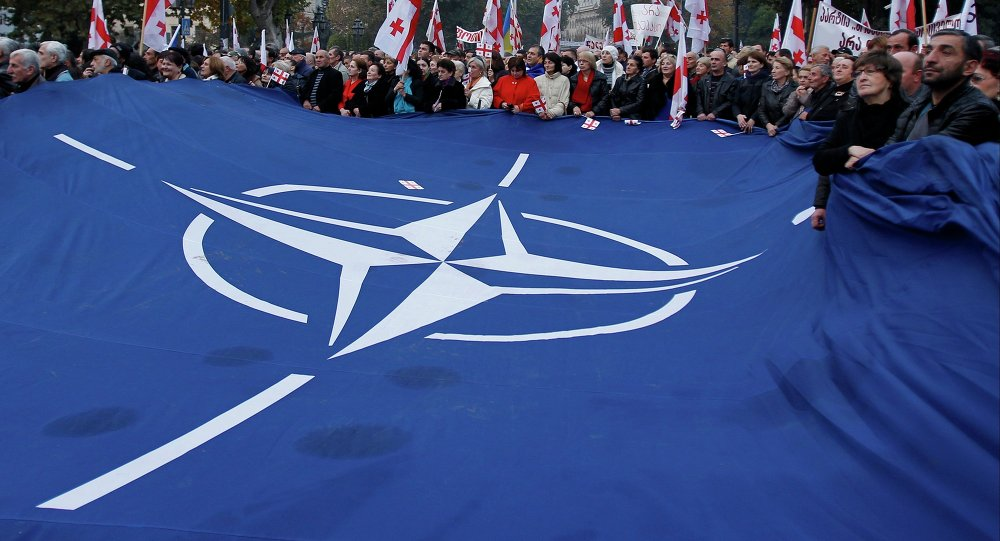Demonstrators carry a huge banner with a NATO sign and Georgian national flags during a rally in Tbilisi
