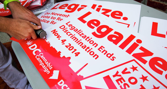 Adam Eidinger, chairman of the DC Cannabis Campaign, works on posters encouraging people to vote yes on DC Ballot Initiative 71 to legalize small amounts of marijuana for personal use, in Washington.