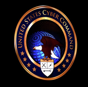 Established in June 2009, US Cyber Command organises cyberattacks against adversaries and network defence operations