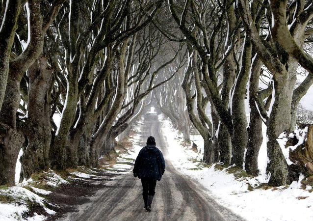 A man walks during snow along the Dark Hedges tree tunnel, which was featured in the TV series Game of Thrones, near Ballymoney in Antrim, Northern Ireland, on January 14, 2015.