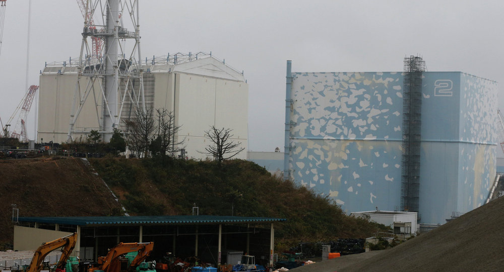 A building covering the Unit 1 reactor (L) is removed by a crane at the Fukushima Dai-ichi nuclear power plant in Okuma, Fukushima Prefecture, northeastern Japan on November 12, 2014