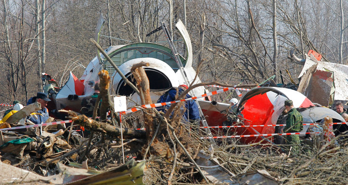 A Polish aviation expert told Radio Sputnik on Friday that attempts to blame Russian air traffic controllers for the crash of the Polish presidential plane in 2010 outside Smolensk were senseless.